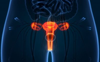 Meet the specialists: diagnosing cervical cancer and the role of prevention and screening Q&A